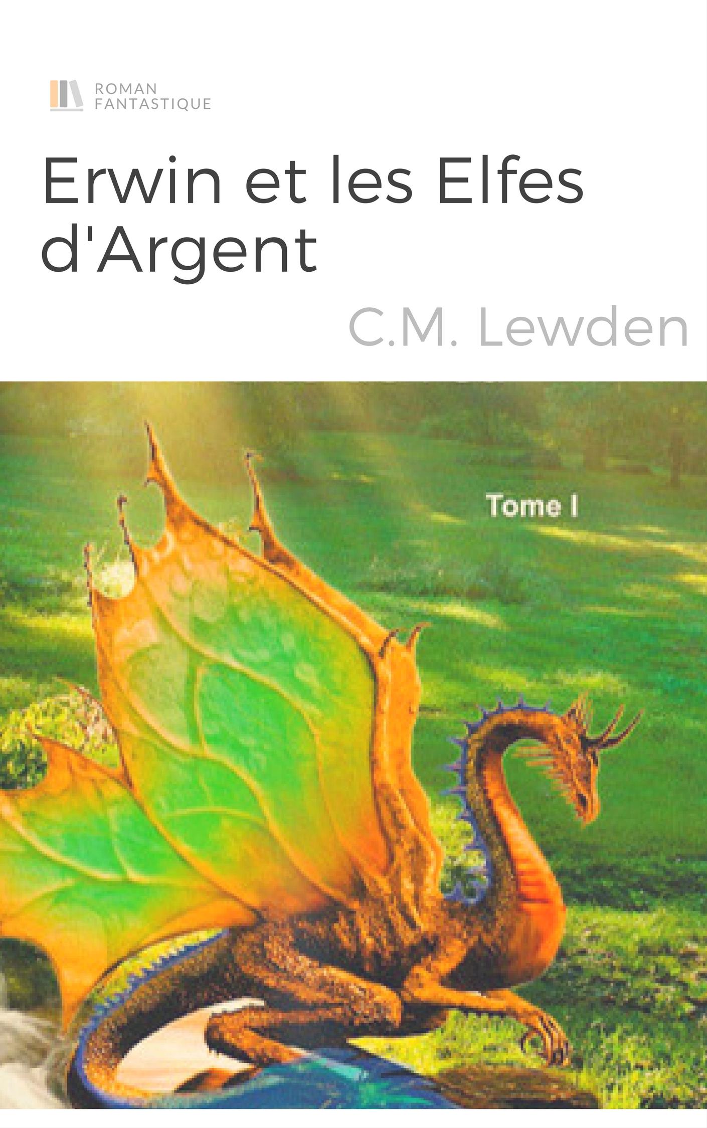 cover test - erwin et les elfes d'argent - c m lewden (image la porte de feu)
